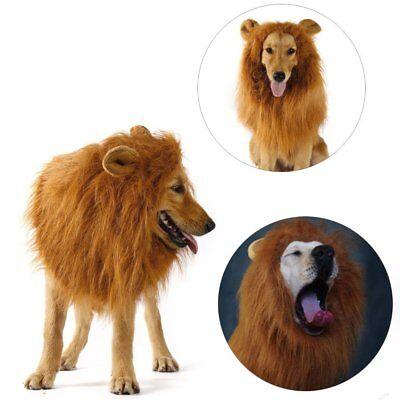 Pet Costume Lion Mane Wig w/ Ears for Large Dog Halloween Clothe Fancy Dress up