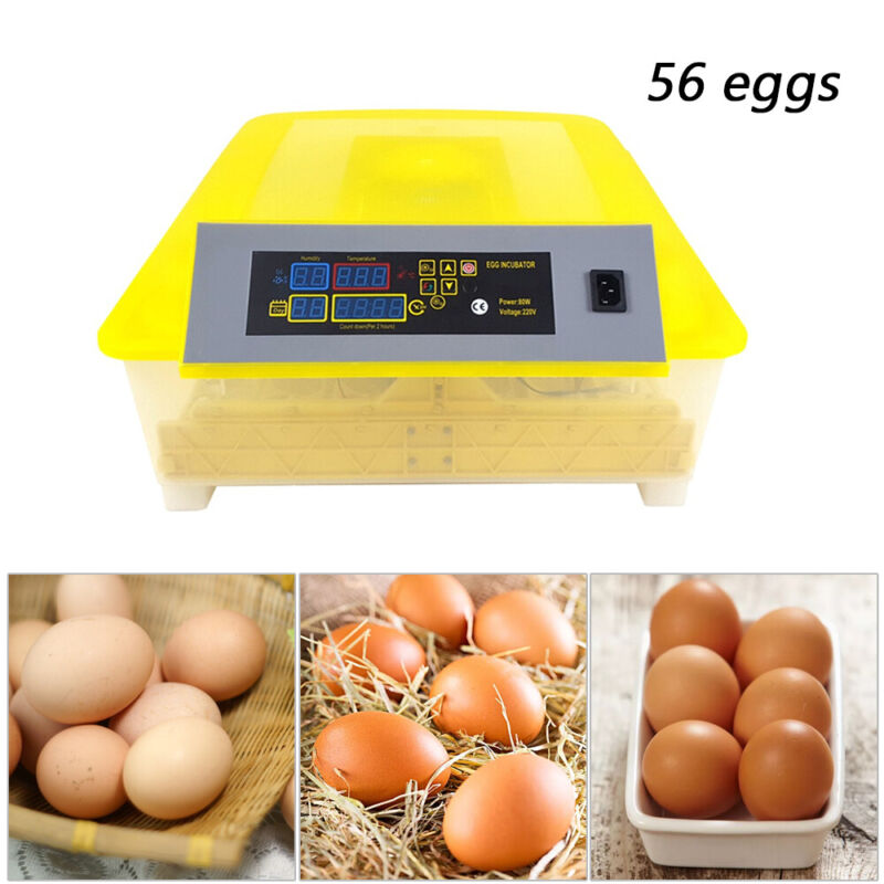 New 56 Eggs Incubator Digital Chicken&Duck Hatcher Fully Turning Automatic USA