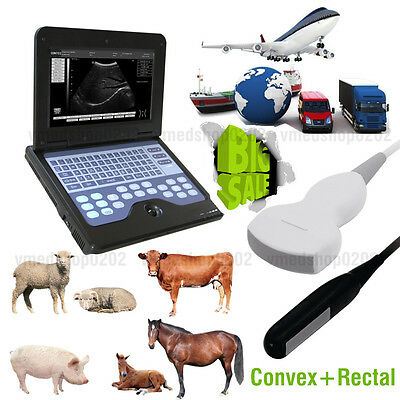 Us Digital Veterinary Ultrasound Scanner Portable Laptop Machine2 Probes Animal