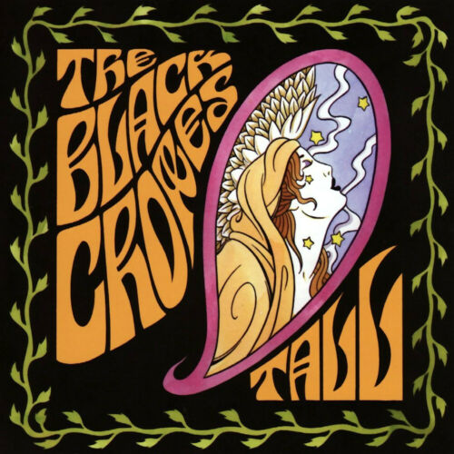 Black Crowes The Lost Crowes 12x12 Album Cover Replica Poster Gloss Print