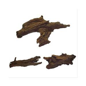 Aquarium Malaysian Driftwood for sale Buy 2 get 1 Free! Brookvale Manly Area Preview
