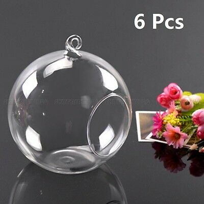 6pcs Flower Glass Hanging Vase Ball Plant Terrarium Container Home Wedding Decor