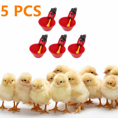 5 Pack Poultry Water Drinking Cups For Chicken Hen Automatic Drinkers Plastic