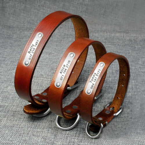 Leather Dog Collar with Name Plate for Small Medium Large Br