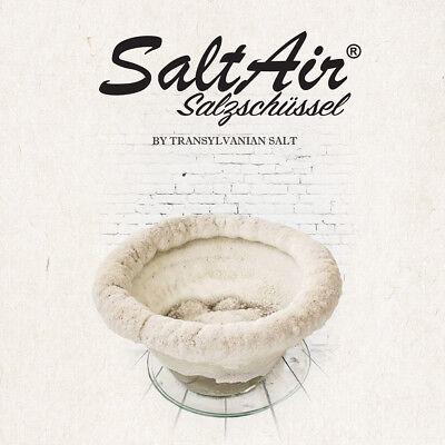 SaltAir Salzschüssel Salzluft für Asthma COPD Bronchitis Luftreiniger
