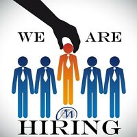 Are you searching for a career??
