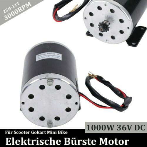 Elektro Motor Bürstenmotor 1000W 36V DC 3000RPM Für Go-Kart E-Scooter Mini Bike