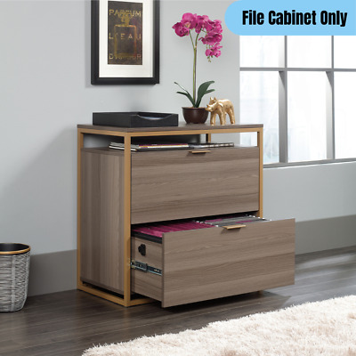 Lateral File Cabinet 2-drawer Storage Contemporary Home Office Display Organizer