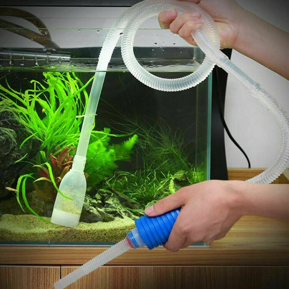 how to siphon gravel in aquariums