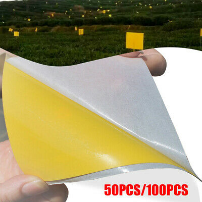 50/100pc Sticky Fly Trap Paper Yellow Traps Fruit Flies Insect Glue Catcher (Best Fruit Fly Trap)