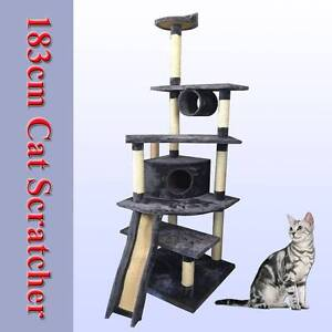 Warehouse direct 183cm cat tree house scratching scratcher Riverwood Canterbury Area Preview