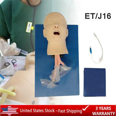 Lab Intubation Child Model Airway Management Trainer Intubation Head Manikin Hot