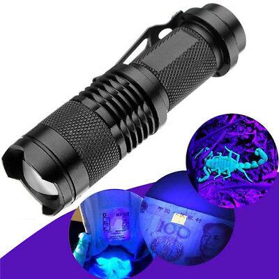 High Powered UV Lamp Black Light Ultra Violet Flashlight 365nm W/ 5Watt LED (Black High Powered Led)