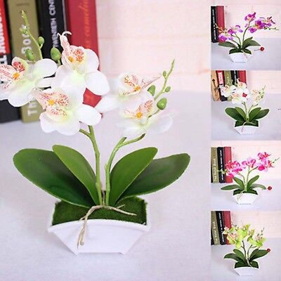 Artificial Butterfly Orchid Flower Plants in Pot Fake Home Decor Wedding Party > ()