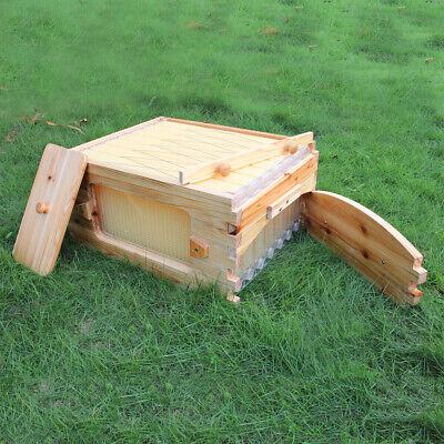 Super Box With 7pcs Flowing Frames Set Fit For 10 Frames Langstroth Hive