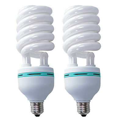5500K 2x125W Energy Saving Bulb Photo Studio Daylight Globe Fluorescent Lamp E27