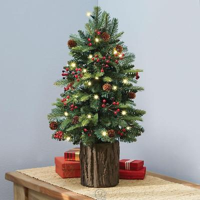 The Tabletop Prelit Holiday Christmas Tree 2' Tall Pre-Decorated LED Light ()