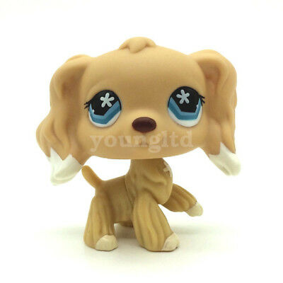 Littlest Pet Shop dog Cocker Spaniel #748 Flower Eyes LPS toy yellow puppy