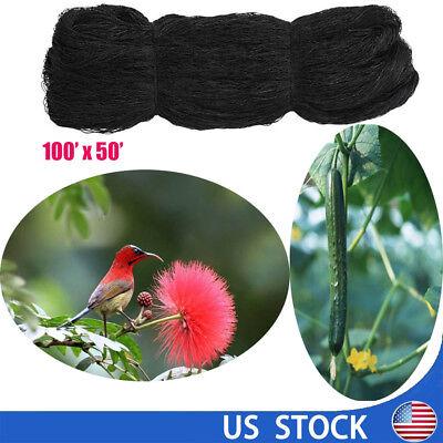 2 Mesh 100x50 Anti Bird Netting Heavy Duty Garden Poultry Polyethylene Net Us