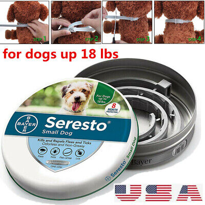 Bayer Seresto Flea and Tick Collar for Small Dog 8 Month Protection Treatment US
