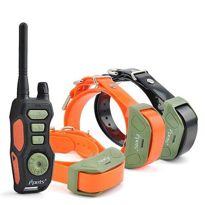 Ipets Dog Training Shock Collar Waterproof Rechargeable Remote E Collar 3 Dogs
