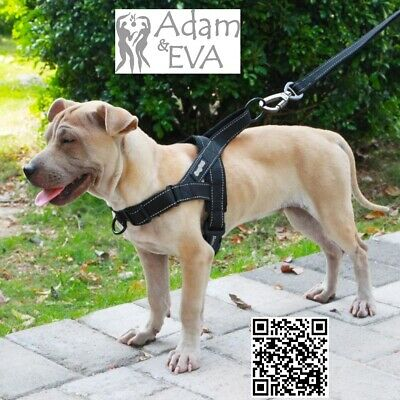World's Best Dog Harness - 2019 Version Reflective,Quick Release S, M, L, XL