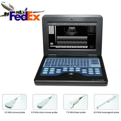 Portable Ultrasound Machine Contec Cms600p2 Ultrsound Scanner Laptop With Probe