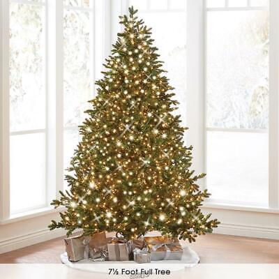 8.5' Slim White Lights Hammacher World's Best Prelit Noble Fir Chritstmas Tree