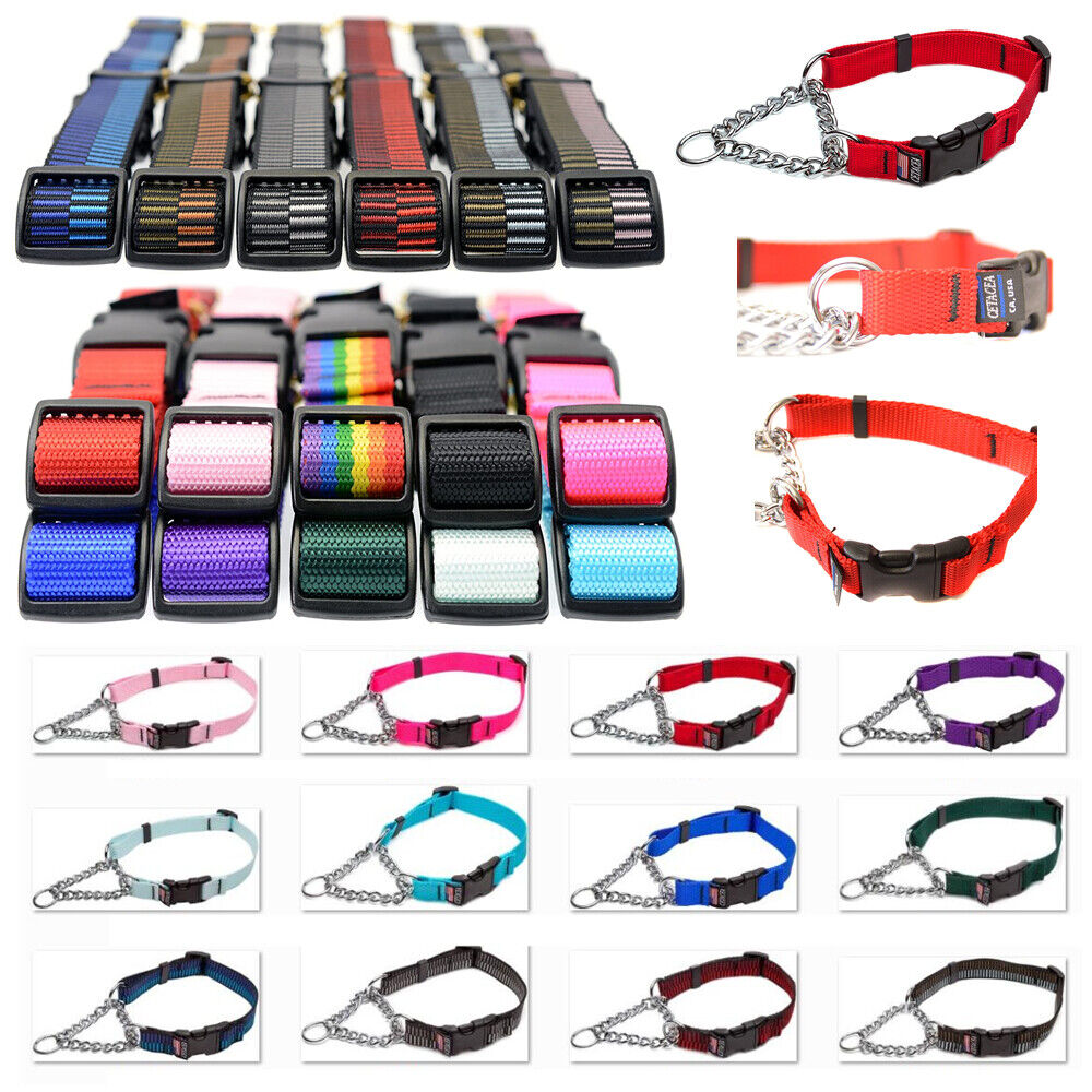 pet supply martingale dog collar with quick