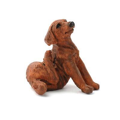 Casa de Muñecas Chocolate Labrador Rayar Mascota Perro Miniatura 1:12 Accesorio