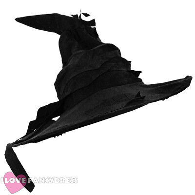 BLACK WITCH WIZARD HAT HALLOWEEN FANCY DRESS COSTUME BOOK FILM MOVIE CHARACTER (Black Dress Halloween Character)