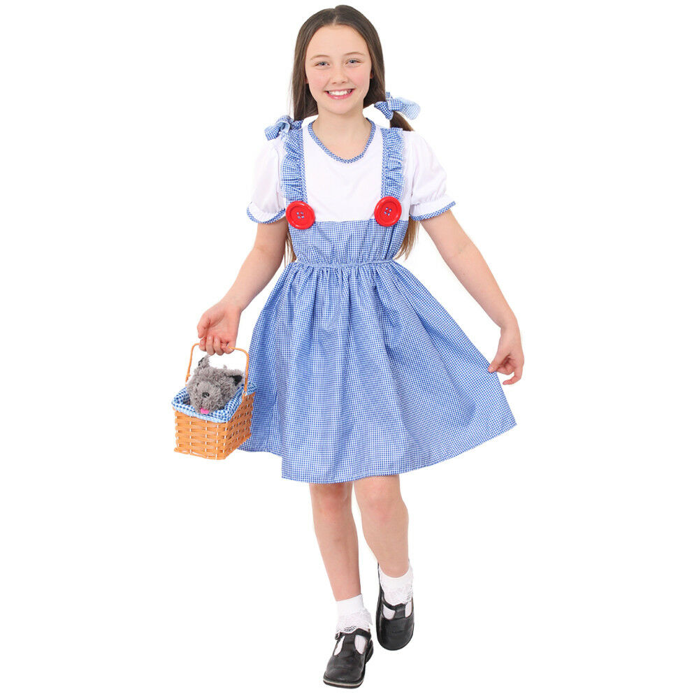 Kansas Dorothy Ladies Fancy Dress Costume