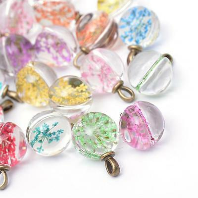Glass Charm Pendant Glass Globe Dried Flower Glass Ball Pendant Crystal Ball
