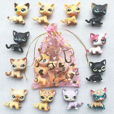 5pcs/set Random LPS short hair Cat rare old Littlest Pet Shop toys surprise gift
