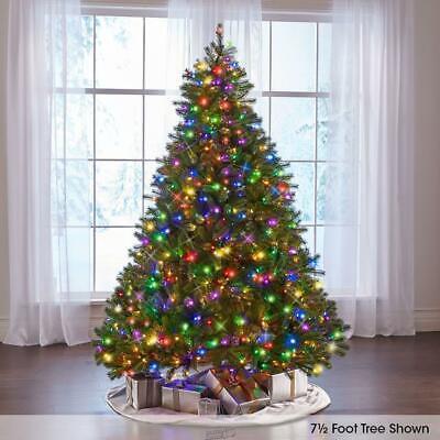 The World's Best Prelit Douglas Fir Christmas Tree Lights (7.5' Slim) ()