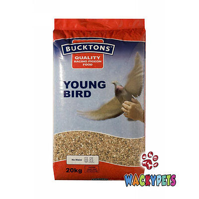 Bucktons Young Bird Pigeon Feed 20kg. Quality Food for Young Pigeons (BUC135)