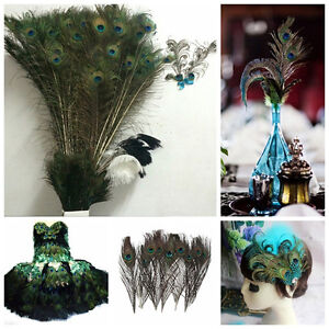 10pcs-Natural-Real-Peacock-Tail-Feathers-About-10-12-Inches-Home-Party-Decor-US