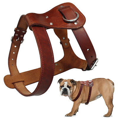 Brown Best Genuine Leather Pet Dog Harness Heavy Duty for Medium Large