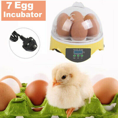 7 Eggs Capacity Chicken Eggs Bird Incubator Semi-Automatic Temperature Control