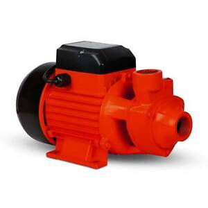 AUS FREE DEL-3300L/Hr 1 HP Electric Clean Garden Pool Water Pump Sydney City Inner Sydney Preview