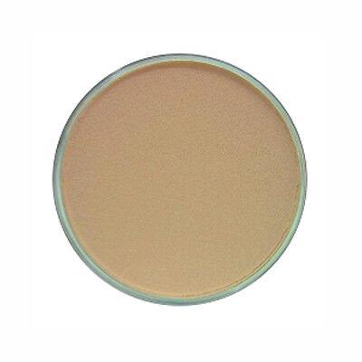 Panpastel Color Burnt Sienna Tint