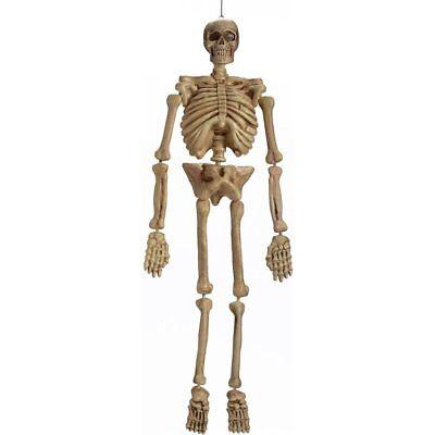 5ft Human Skeleton Poseable Halloween Life Size FANCY DRESS PARTY Prop Decor 60