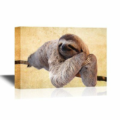 wall26 - Wild Animal Canvas Wall Art - A Sloth on a Tree Branch - 12x18 inches