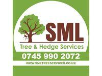 Tree surgeon, Tree care, Arborist, Tree felling, Stump grinder, Woodchipper, Tree services, Hedges..