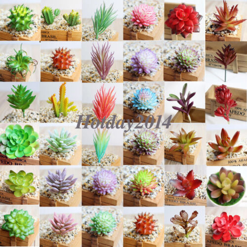 Купить Simulation Mini Plastic Succulents Scindapsus Plants Garden Home Office Decor