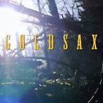 goldsax-goldwaschen