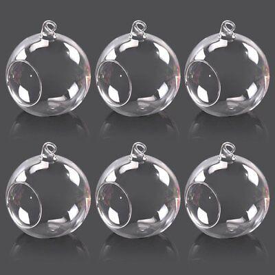 6pcs Hanging Clear Glass Globe Ball Candle Tea Light Holder Air Plant TerrariDQ