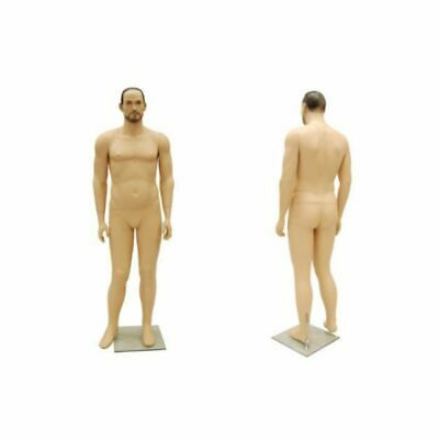Plus Size Full Body Adult Male Mannequin With Realistic Face And Molded Hair
