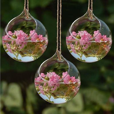 3pcs Flower Hanging Vase Planter Terrarium Container Glass Home Wedding Decor