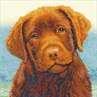 Counted Cross Stitch Kit HOT CHOCOLATE Labrador Puppy Dimensions Gold - Hot Chocolate Kit